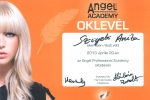 angel-professional-oklevel